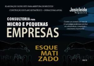 Livro de Consultoria Empresarial para Micro e Pequenas Empresas - Josicleido Nogueira